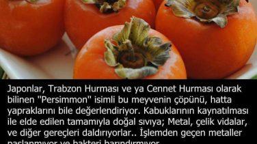 Vay Be Trabzon Hurmasının Marifetlerine Bak Hele..