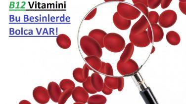 B12 Vitamini Bolca İçeren Besinler